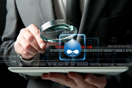 Drupal security audit